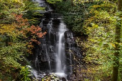 Soco Falls (Studio281Photos) Tags: northcarolina qualla cherokee nature landscape waterfall mountains hiking woods forest autumn trees color fallfoliage october longexposure cloudy outdoors vacation travel nikon nikond800 2470mm water rock falls socofalls