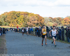2018.11.10_CROSSCNTRY_WomensMens_VanCortlandtPark_JesiKelley-798 (psal_nycdoe) Tags: menscrosscountry nycpsal nycpsalsports nycsports newyorkcitypublicschoolsathleticleague psal2018crosscountry psal2018crosscountrychampionships psalcrosscountry teenagersplayingsports womenscrosscountry highschoolsports kidsplayingsports 201819 cross country psal public schools athletic league van 201819crosscountrycitychampionships xtry xcountry nycdoe new york city high school championships vancortlandtpark cortlandt jesi kelley jessica nyc newyorkcity newyork usa department education boys girls championship