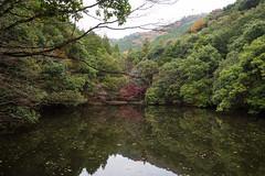 PC013693 (kunmorita) Tags: 白馬渓 臼杵市 臼杵 usuki