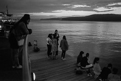early evening at Manly wharf, Sydney harbour, 2018  #625 (lynnb's snaps) Tags: afnikkor35mmf2d apx100 manly nikonf80 rodinal bw film night 2018 sydneyharbour agfaapx100 people street lastlight water wharf pier reflections sunset peaceful manlywharf slr ©copyrightlynnburdekinallrightsreserved ishootfilm