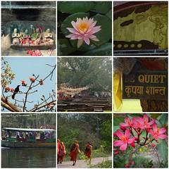 lumbini (belight7) Tags: nepal mosaic lumbini travel buddhist buddha collage bequiet maya devi bird boat unesco
