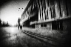 3341 (Elke Kulhawy) Tags: nanterre paris art bnw bw blackandwhite surreal monochrome grain abstract dark people shadow sky birds france frankreich building street absoluteblackandwhite