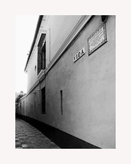 Sevilla 186 (BLANCA GOMEZ) Tags: spain andalucia andalusia sevilla seville bw blackwhite light shadows patterns arquitectura architecture street wall callevida lifestreet