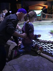 "2018-03-24-to-30-minnesotta-to-see-adam-and-sara-curl-with-family-aquarium-3_44228179164_o • <a style=""font-size:0.8em;"" href=""http://www.flickr.com/photos/109120354@N07/45494744754/"" target=""_blank"">View on Flickr</a>"