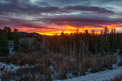 Oh What a Glorious Morning (RkyMtnGrl) Tags: landscape nature scenery sunrise morning daybreak clouds colorful pines aspens wilderness forest glorious colorado allenspark 2018