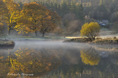 The Spirit Of The Water (Andy Lea Photography) Tags: landscape light mist reflections trees water river cumbria andy lea photography