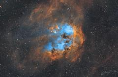 Tadpoles Nebula (Alejandro Pertuz) Tags: nebula space cosmos tadpole sho hubble astronomy astrophotography telescope longexposure narrowband astrometrydotnet:id=nova3162655 astrometrydotnet:status=solved