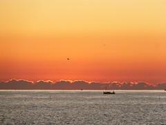 Primer amanecer 2019 (4) (calafellvalo) Tags: amaneceralbasolcalafellseaalbadasunrise amanecer sunrise amanecerdelaño2019 alba albada sea mar calafellvalo contraluz calafell aves gaviotas