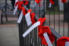 in the square: around the war memorial (quietpurplehaze07) Tags: happyfencefriday poppies amapolas remembrancesunday2018 red fence railings warmemorial sundaylights