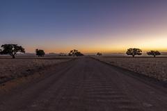 _RJS4259 (rjsnyc2) Tags: 2019 africa d850 desert dunes landscape namibia night nikon outdoors photography remoteyear richardsilver richardsilverphoto safari sand sanddune sunset travel travelphotographer animal camping stars wildlife