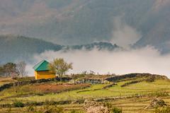 _J5K6628.0212.Y Tí.Bát Xát.Lào Cai (hoanglongphoto) Tags: asia asian vietnam northvietnam northeastvietnam landscape scenery vietnamlandscape vietnamscenery vietnamscene cloud clouds house home tree one 1 canon canoneos1dsmarkiii đôngbắc flanksmountain làocai ytí phongcảnh sườnnúi mây ngôinhà hàngcây sunlight sunny nắng sunnymorning nắngsớm