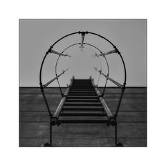 desolate ladder (Armin Fuchs) Tags: arminfuchs niftyfifty trist ladder