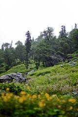 IMG_5683 (bhopi.tushar) Tags: leh ladakh mountains pangong lake diskit monastery