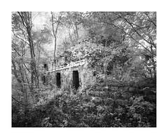 Xkipche II (Sandra Herber) Tags: infrared mayan mexico ruins xkipche yucatan