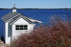 Boathouse (Toats Master) Tags: water boathouse georgianbay bay shoreline