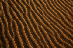 Sand lines (Bert#) Tags: netherlands kootwijk kootwijkerzand sand dune lines curves wind waves brown vivid abstract pattern texture hike