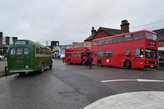 AEC T499, Leyland RTW335 and T986 Ensignbus (Richard.Crockett 64) Tags: aec associatedequipmentcompany t499 leyland rtw335 t1 londonpassengertransportboard chiswick parkroyal londontransport greenline bus coach passengervehicle ensignbus vintagerunningday upminster essex 2018