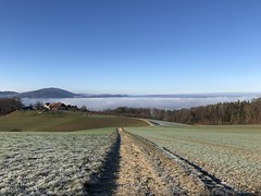On our way home (Rosmarie Voegtli) Tags: arlesheim nebel mist frost fields hiking land himmel winter sky home homeland dornach weg path