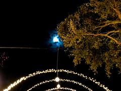 Christmas Lights and the Moon (Lux Llama Productions) Tags: christmas lights holiday holidays winter december jan january dec decor decorations decoration prop jesus usa us unitedstates florida bocaraton house suburb hot light led cool awesome santa sleigh reindeer deer trees tree orb