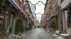 Winter, hiver - Rue du Petit-Champlain, Vieux Québec - Canada - 8781 (rivai56) Tags: winter hiveréruedupetitchamplain vieuxquébec canada hiver ruedupetitchamplain street quebec quebeccity noel christmas