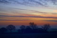 Sunrise Near Bings Heath, Shropshire 14/12/2018 (Gary S. Crutchley) Tags: bings heath shawbury shropshire sunrise sun rise morning dawn rural countryside uk great britain england united kingdom shires nikon d800 landscape land scape travel raw nikkor afs 28300mm f3556g ed vr