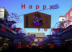 It's the Year of the Boar!! (Eshke04) Tags: happy new year message 2019 tokyo japan asakusa nakamise decoration board boar illustration arrow happiness crowd people life winter downtown sky temple architecture shops buildings perspective angle scene traffic view frame composition oo