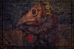The Alchemist (jimlaskowicz) Tags: jimlaskowicz artistic impressionistic mystical fantasy doctor mask surreal medieval panel textures art mystery elixir magic alchemist alchemy philosopher