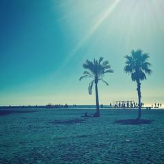 Beach lovers (joannab_photos) Tags: