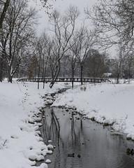 ForestPark_SAF5112 (sara97) Tags: citypark copyright©2019saraannefinke forestpark forestpark2019 ice missouri photobysaraannefinke saintlouis snow winter winter201819