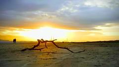 Dollymount, Dublin (conaero) Tags: dublin dollymount beach ireland raheny sand dunes stick sunset water clouds