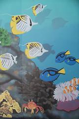 Aquarium of the Pacific. (LisaDiazPhotos) Tags: aquarium pacific murual lisadiazphotos