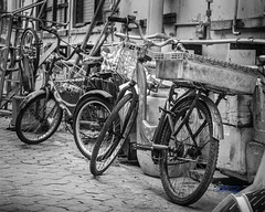 RomanLens-_NIK4395-8x10WebSign (RoManLeNs) Tags: outdoors outside day daytime artistic blackandwhite bw desaturated monochrome humidity humid island transportation bike bicycle romanlens romrom rom