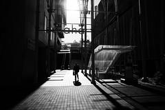 Sunny day (y uzen (犬も歩けば…)) Tags: bw monochrome japaninbw lightandshadow fujifilm street
