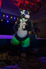 DSC08979 (Kory / Leo Nardo) Tags: pacanthro pawcon paw con pac anthro convention fur furry fursuit suiting mascot sona fursona san jose doubletree hotel california dance party deck animals costuming pupleo 2018