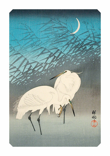 03-Affiche // A3 // Egrets