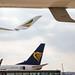 Frankfurt Airport: Ryanair Boeing 737-8AS B738 EI-DCF