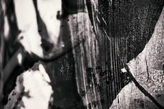 Impressions Of Art 5 (pni) Tags: art surface saastamoisensäätiönkokoelmanäyttely kosketus saastamoinenfoundationartcollection touch saastamoinenstiftelsenssamlingsutställning beröring multiexposure multipleexposure tripleexposure emma espoomuseumofmodernart espoonmodernintaiteenmuseo esbomodernakonstmuseum espoo esbo finland suomi pekkanikrus skrubu pni