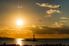 鳥と夕日 (milk777) Tags: 船形 夕日 夕景 灯台