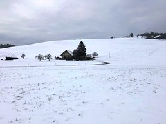 Winter 2019: Dürrenthan Biglen (Martinus VI) Tags: winter winterlandschaft hivers schnee snow nieve neige emmental kanton canton de bern berne berna berner bernese schweiz suisse suiza switzerland svizzera swiss y190112 martinus6 martinus6xy martinus martinusvi