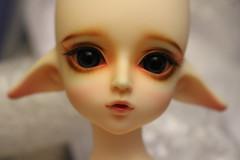 Nana Elf Version (pullip_junk) Tags: luts balljointeddoll lutsbjd bjd modeldelf nana kiddelf nanaelfversion