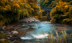 Bridge in the valley (canon-Tom) Tags: landscap nature longexposure water waterfall taipei taiwan tree forest sky valley travel