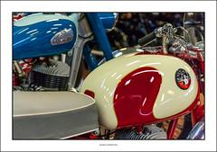 Norman and Greeves (G. Postlethwaite esq.) Tags: 2stroke canon40d canonefs60mmmacro dof greeves nationalmotorcyclemuseum norman villiersengine beyondbokeh bokeh depthoffield motorcyle photoborder primelens selectivefocus