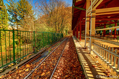 Autumn is bright (Peter Szasz) Tags: nature landscape hungary hdr magyarország miskolc longexposure travel trail rail railroad railway outside outdoors out autumn november colourful calm trees tranquil tree fall forest leaves brown bright branches fence station bench green hill hillside canon wide wideangle wood sky