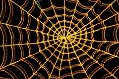 spider web (JoelDeluxe) Tags: rol riveroflights abq biopark nm december 2018 albuquerque biological park pnm light display colors lights sculptures fantasy newmexico hdr joeldeluxe