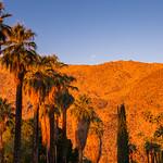 Palm Springs, Califiornia thumbnail