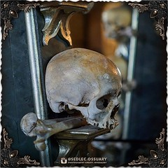 """""""To put everything in balance is good, to put everything in harmony is better."""" -Victor Hugo . 💀Turn on post notifications, click link in BIO to follow along on our journey, and sign up on our mailing list at: ☩ sedlecossuary.mechanicalwhispers.com (Sedlec Ossuary Project) Tags: sedlecossuaryproject sedlec ossuary project sedlecossuary kostnice kutnahora kutna hora prague czechrepublic czech republic czechia churchofbones church bones skeleton skulls humanbones human mementomori memento mori creepy travel macabre death dark historical architecture historicpreservation historic preservation landmark explore unusual mechanicalwhispers mechanical whispers instagram ifttt"""