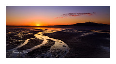 The Last Wee Glimmer... (RonnieLMills 6 Million Views. Thank You All :)) Tags: sunset sun down low tide strangford lough portaferry road newtownards lastweeglimmer ronnielmills landscape photography