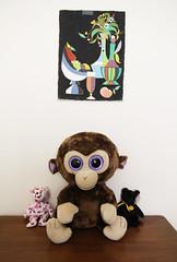 Beanie Babies (Tamara Tarasiewicz) Tags: beaniebabies beaniebaby kissy coconut haunt ty