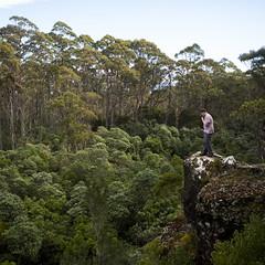 Clarks Cliffs