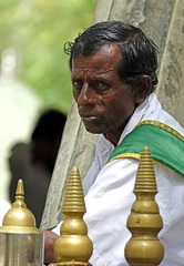 watchful (geneward2) Tags: jaya sri mata bodhi tree watchful man portrait lanka
